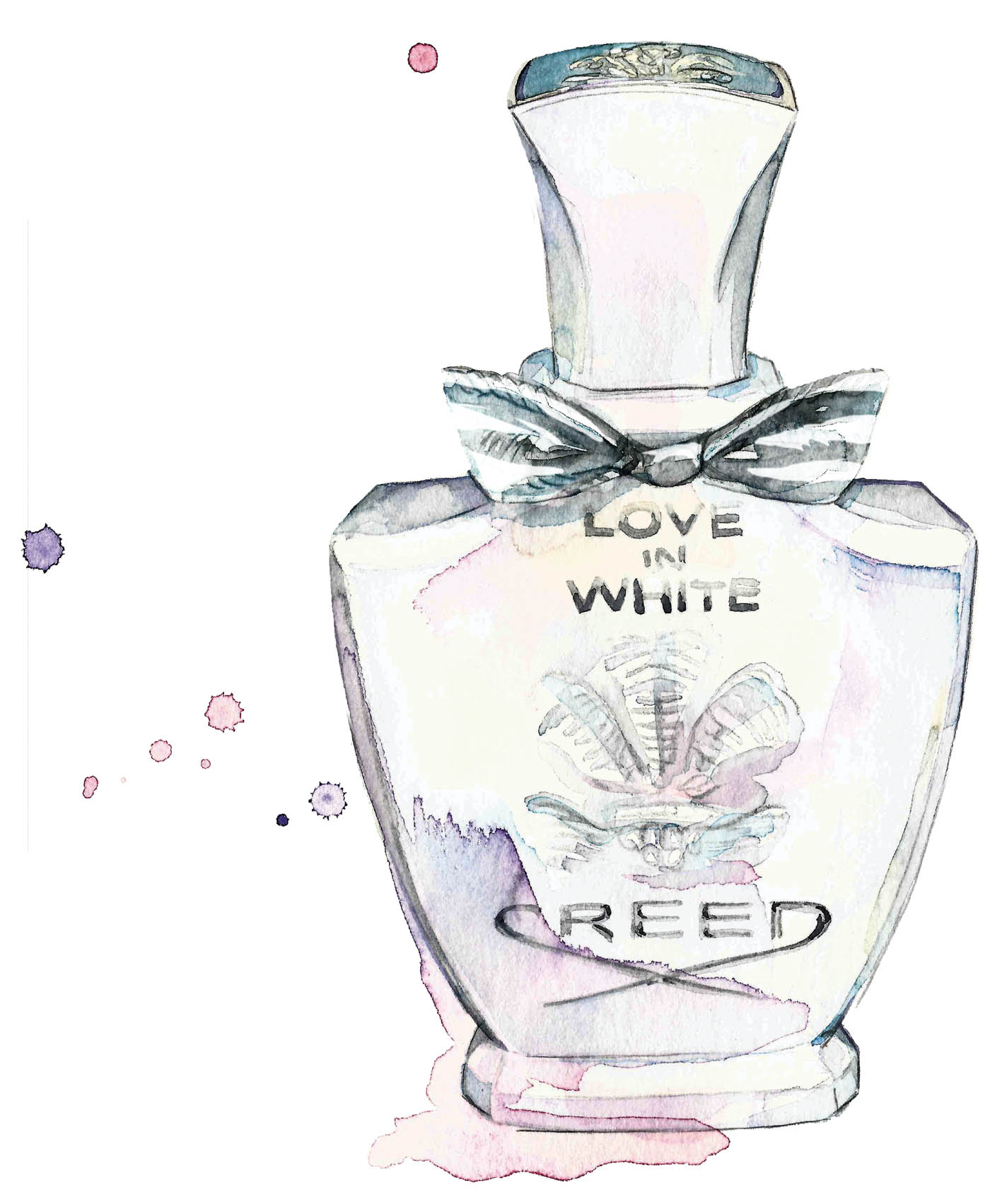 P Creed