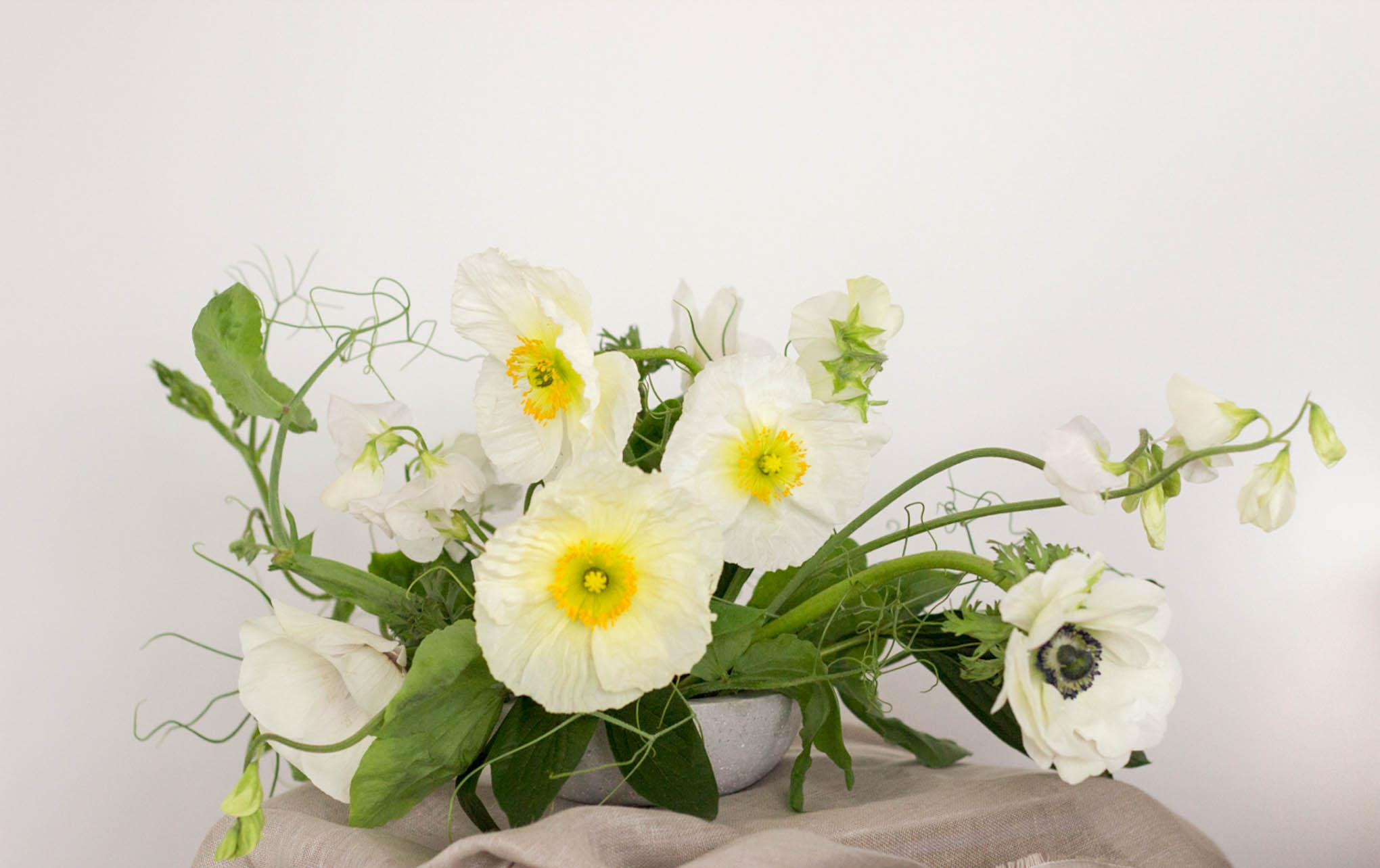 blooms-of-the-week_october5