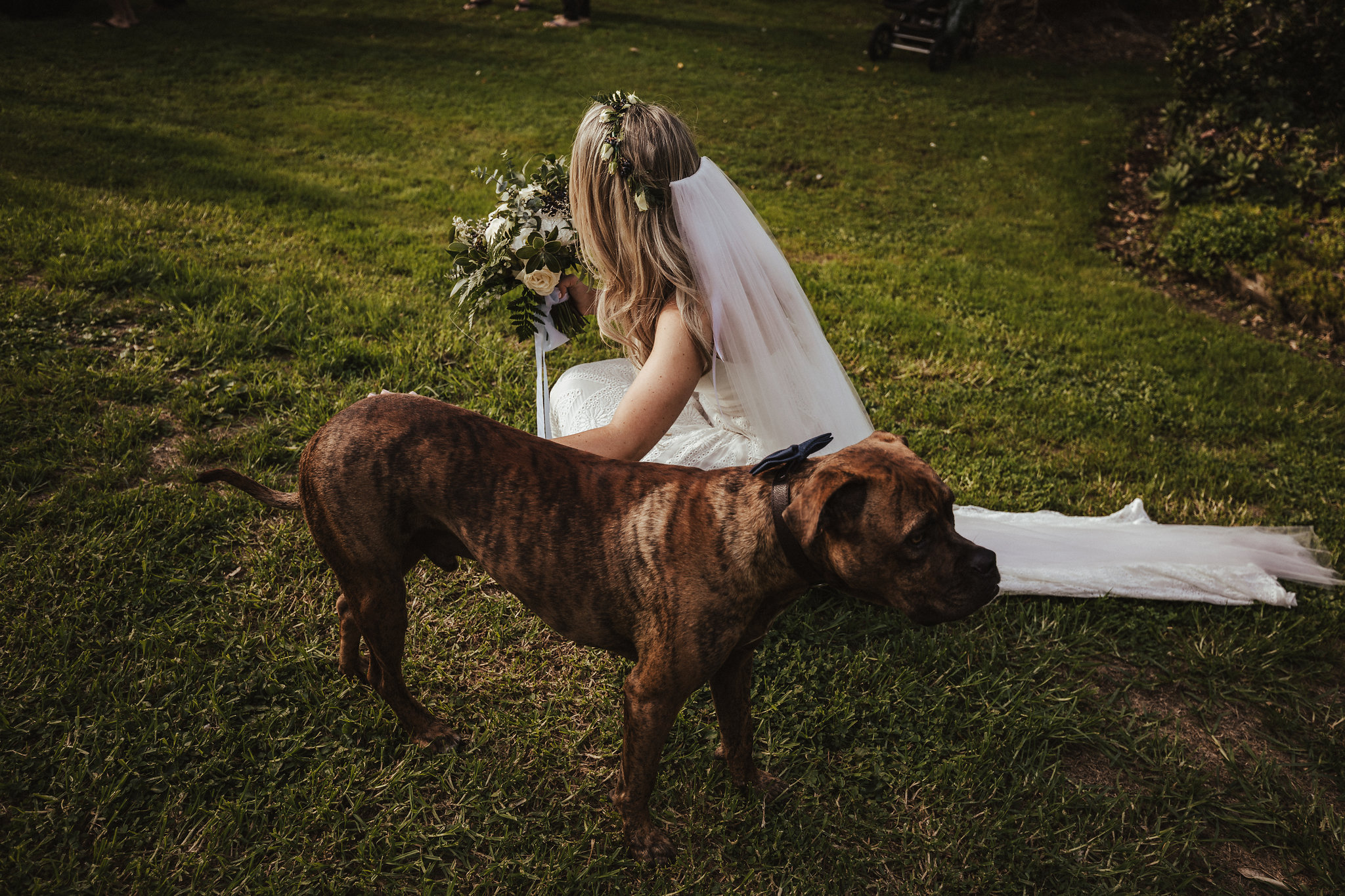 Categories: Weddings-Real Wedding: Gray & Bronté - Photography by Ralph Bella