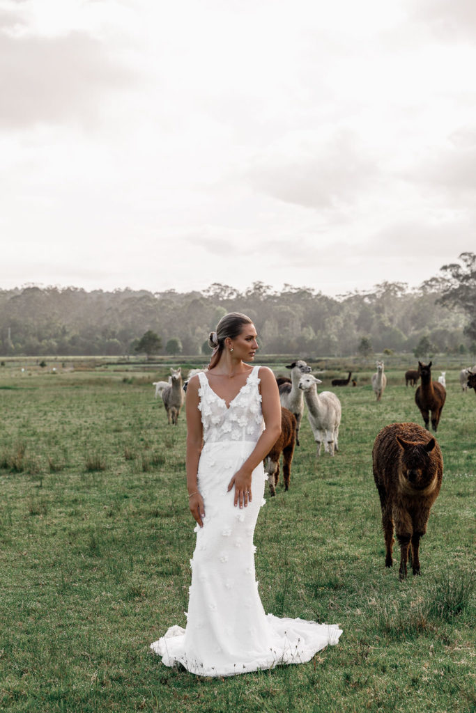 paloma-james-bridal-atelier