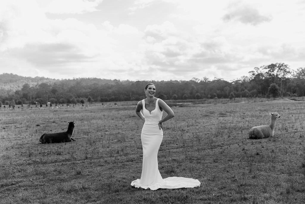 paloma-james-bridalwear-sydney-australia